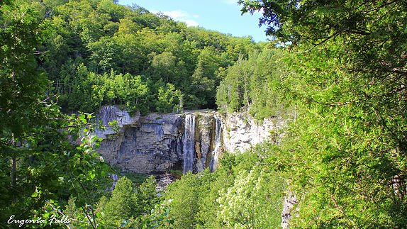 Eugenia Falls in Beaver Valley Grey Highlands