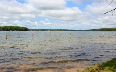 Lake Eugenia Market Report for 2020